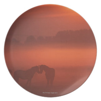 Two horses at sunset plate