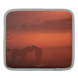 Two horses at sunset sleeve for iPads