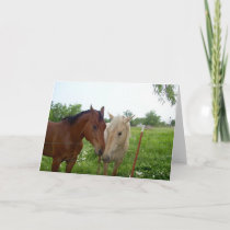 Two Horses - Blank Inside Holiday Card
