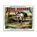 TWO HORSES CERVEJA IMAGINÁRIA CARTÕES POSTAIS