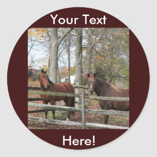 Two Horses! Classic Round Sticker