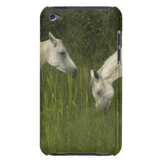 Two horses eating grass Case-Mate iPod touch case