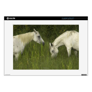 """Two horses eating grass decals for 15"""" laptops"""