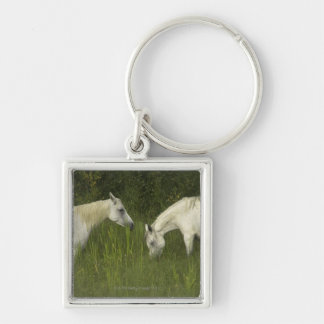 Two horses eating grass key chain