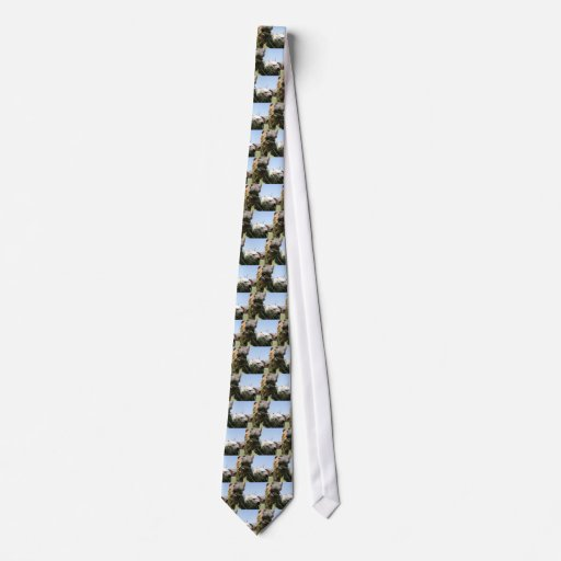 Two horses eating together tie