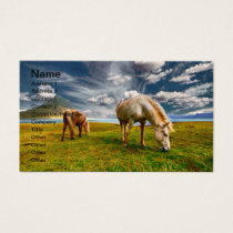 Two Horses Grazing in Pasture Business Card