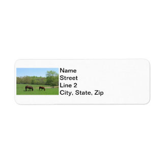 Two horses Grazing Label