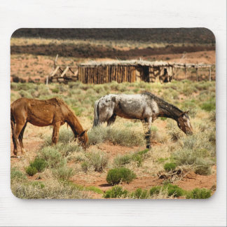Two horses grazing, Monument Valley, UT Mouse Pad