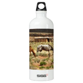 Two horses grazing, Monument Valley, UT SIGG Traveler 1.0L Water Bottle