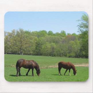 Two horses Grazing Mouse Pad