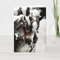 Two Horses Holiday Christmas Greeting Card