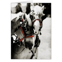 Two Horses Holiday Christmas Greeting Card