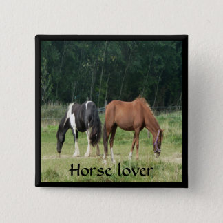 Two horses in a field pinback button