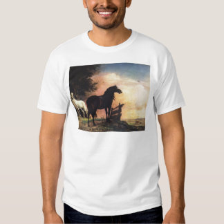 Two Horses in a Meadow near a Gate Tee Shirt