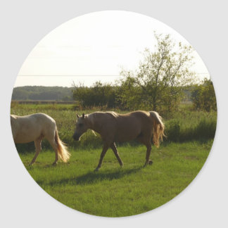 Two horses in open field round stickers