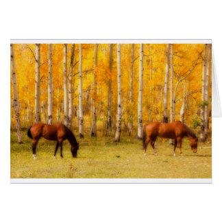 Two Horses in the Colorado Fall Foliage Card