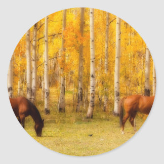 Two Horses in the Colorado Fall Foliage Classic Round Sticker