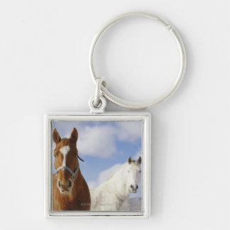 Two Horses Key Chains