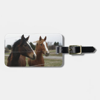 Two Horses Tags For Bags