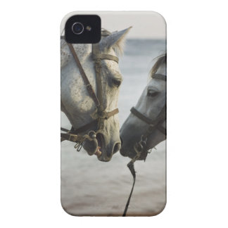 Two horses meeting. iPhone 4 cover