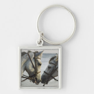 Two horses meeting. keychain