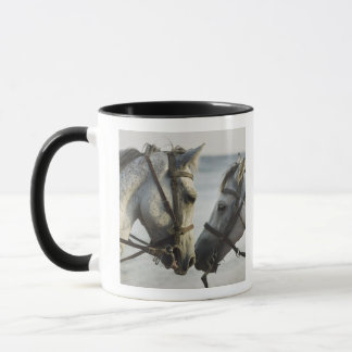 Two horses meeting. mug