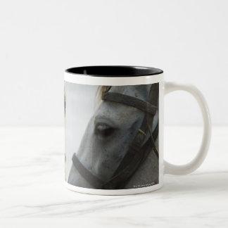 Two horses meeting. Two-Tone coffee mug