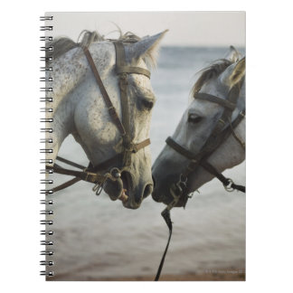 Two horses meeting. spiral notebook
