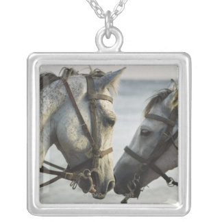 Two horses meeting. silver plated necklace