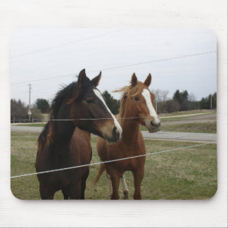 Two Horses Mouse Pad
