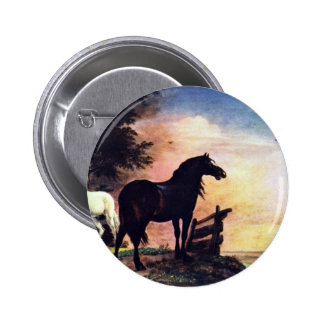 Two Horses Near A Gate In The Meadow [1]. Pinback Button