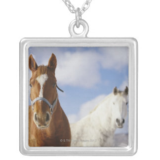 Two Horses Jewelry