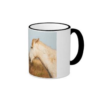 Two horses of Camargue Ringer Coffee Mug