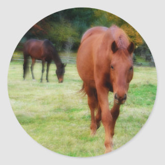 Two Horses on Farm Field Stickers