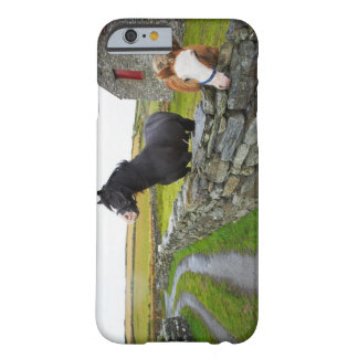 Two horses on farm in rural England Barely There iPhone 6 Case
