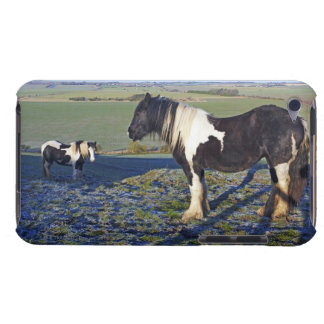 Two horses on Hackpen hill in North Wiltshire Barely There iPod Cover