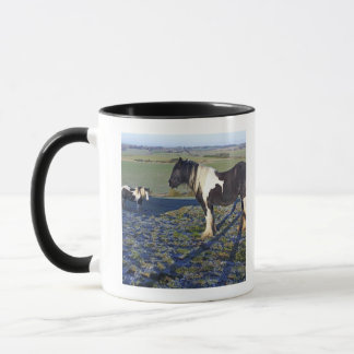 Two horses on Hackpen hill in North Wiltshire Mug