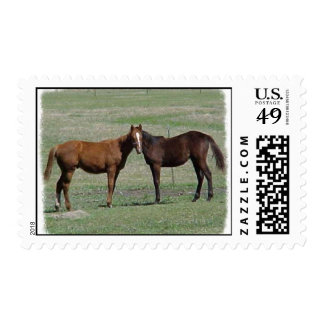 Two Horses, One Head? Postage
