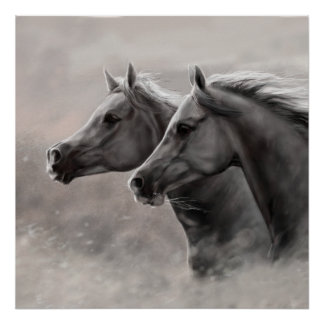 Two Horses Painting Gift Black Stallions Poster