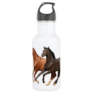 TWO HORSES 18OZ WATER BOTTLE