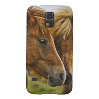 Two horses portrait case for galaxy s5