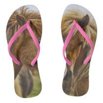 Two horses portrait flip flops