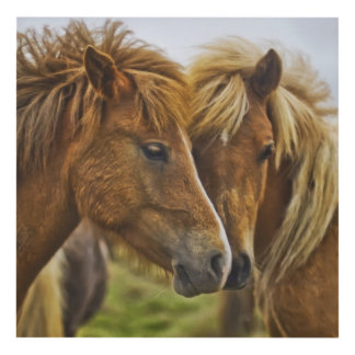 Two horses portrait panel wall art