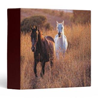 Two Horses Running Vinyl Binders