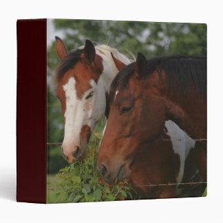 Two Horses Sharing Vinyl Binders