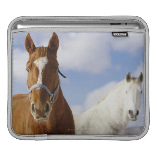 Two Horses Sleeve For iPads