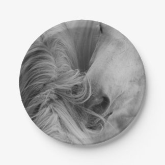 Two Horses Social Grooming B&W Equine Photography Paper Plate