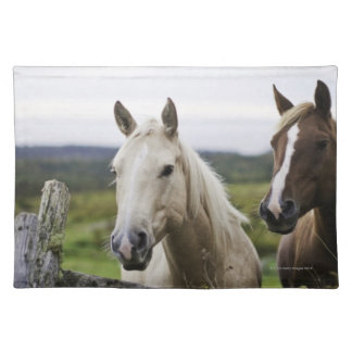 Two horses stand near fence in farm field of off cloth place mat