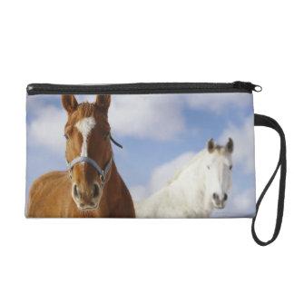 Two Horses Wristlet Purse