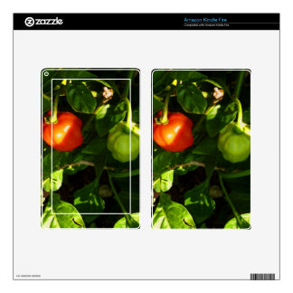 two hot peppers on the plant decal for kindle fire